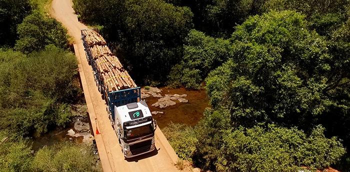 Bitrenes Volvo Forestales