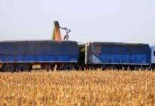 Fue reglamentada la nueva tarifa del transporte de cereales