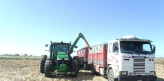 Aumentó la tarifa de granos, cereales y oleaginosas